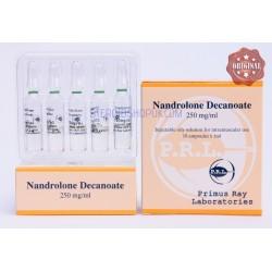 Nandrolone Decanoate Primus Ray 10X1ML [250mg/ml]