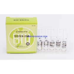 Testen 250 BM (Injection de testostérone énanthate) 12ML [6X2ML flacon]